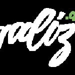 блогализатор лого
