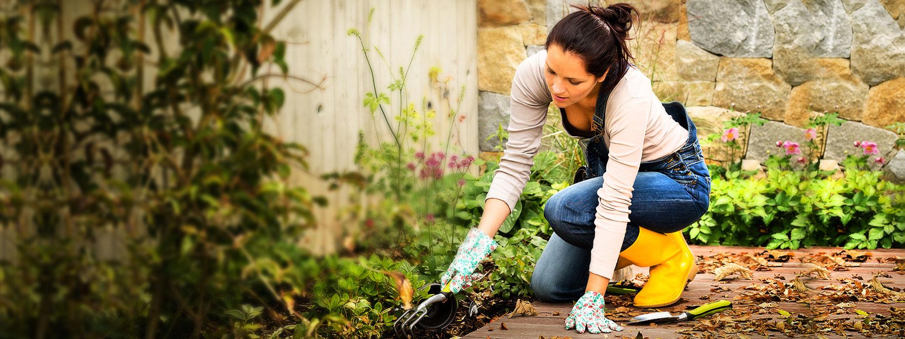 озеленяване на тераси