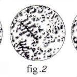 test-za-ovulacia-fertitest-3